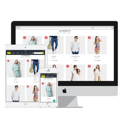 eCommerce Design / Development / Maintenance / Support